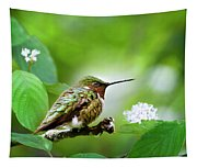 Male Ruby-throated Hummingbird At Rest Tapestry