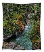 Maligne Canyon Falls Jasper National Park Tapestry
