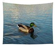 Mallarad Duck 1 Tapestry