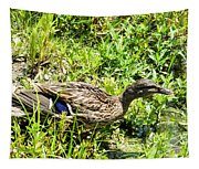 Mama Duck On Guard Tapestry