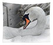 Mama Swan At Abbotsbury - Desaturated Tapestry