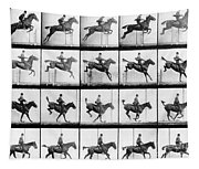 Man And Horse Jumping Tapestry
