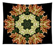 Mandala Autumn Star Tapestry