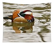 Mandrin Duck Going For A Swim Tapestry