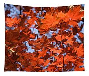 Maple Leaves Aglow Tapestry