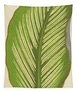 Maranta Alba Lineata Tapestry