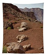 Marble Canyon Vii Tapestry