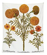 Marigolds, 1613 Tapestry