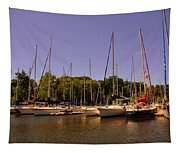 Marina At Lake Murray S C Tapestry