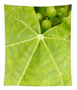 Maturing Wine Grapes Tapestry