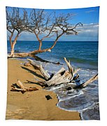 Maui Beach Dirftwood Fine Art Photography Print Tapestry