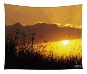 Maui Sunset Tapestry