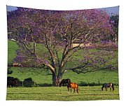 Maui, Upcountry Tapestry