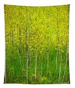 May 25 2010 Tapestry