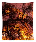 May One Sunset Tapestry