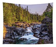 Mcdonald Creek Falls Tapestry