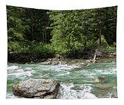 Mcdonald Creek Panorama Tapestry