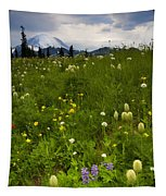 Meadow Beneath The Storm Tapestry