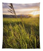 Meadow Light Tapestry by Chad Dutson