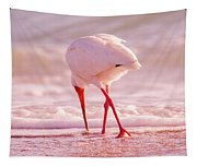 Meandering Beauty Cortez Beach Tapestry
