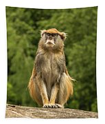 Meditating Monkey Tapestry