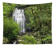 Meigs Falls 1 A Tapestry