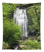 Meigs Falls 1 B Tapestry