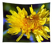 Mello Yello Tapestry