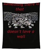Mending Wall Transparent Background Tapestry
