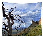 Mesa Verde Mood Tapestry
