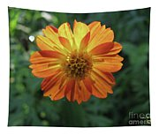 Mexican Hat Tapestry