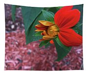 Mexican Sunflower In Mid Bloom Tapestry