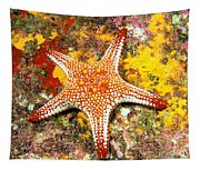 Mexico, Gulf Sea Star Tapestry
