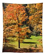 Middle Falls Viewpoint In Letchworth State Park Tapestry