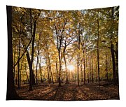 Midwest Forest Tapestry