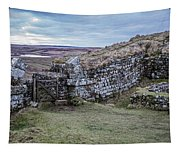 Milecastle 37 Tapestry