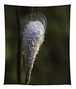 Milkweed In Autumn Tapestry