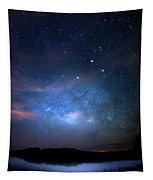 Milky Way At 9 Mile Pond Tapestry
