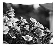 Mill Hill Inn Petunias Black And White Tapestry