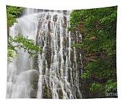 Mingo Falls Closeup Tapestry