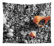 Shells Tapestry