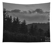 Misty Maine Woods Black And White 2 Tapestry