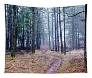 Misty Morning Trail In The Woods Tapestry