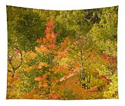 Mixed Autumn Tapestry