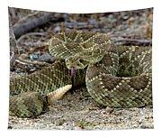 Mohave Green Rattlesnake Striking Position 3 Tapestry