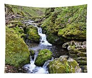 Moine Panorama Tapestry