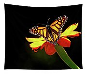 Monarch And Tithonia Light And Shadow Tapestry
