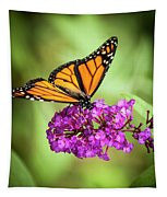 Monarch Moth On Buddleias Tapestry