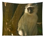 Monkey In The Tree Tapestry