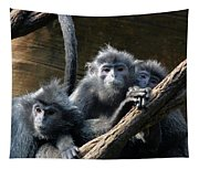 Monkey Trio Tapestry